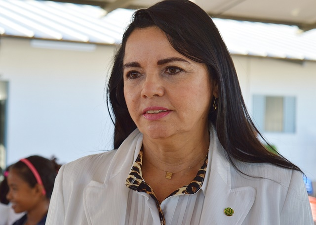 Deputada Teresa Britto defende instalação de hospital de campanha